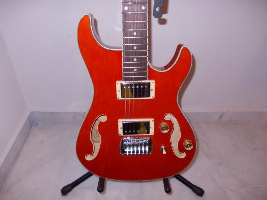 Eléctrica Ibanez artcore, acústica 12 cuerdas, mandolina y ampli acústica