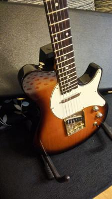 Busco guitarra  ofrezco Telecaster  Gadow Nashville