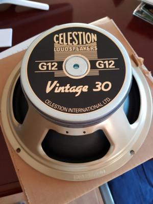 Celestion V30 a 8 ohms.