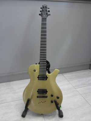 Guitarra electrica PARKER PM20 1era Serie