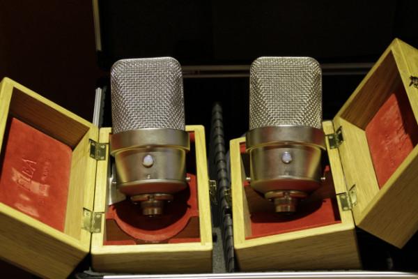 x2 Micrófonos FLEA 250