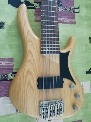Washburn Bantam RB-2600 (6 Cuerdas, Corea)