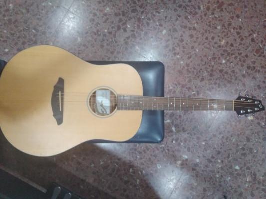 Guitarra Acústica Breedlove D20