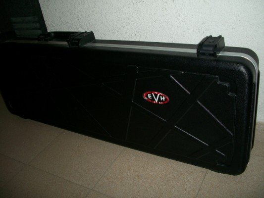 Estuche Evh Stripe Series Case