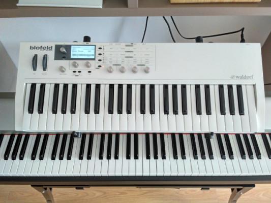 Waldorf Blofeld teclado