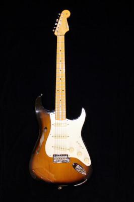Fender Stratocaster Eric Johnson Thinline