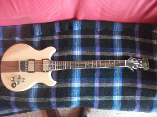 Guitarra eléctrica modelo Bravo de TORO