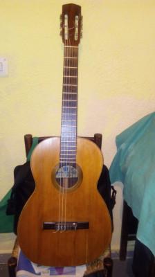 Guitarra Andres Marin palo de rio