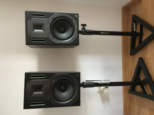 Monitores Behringer B3031A