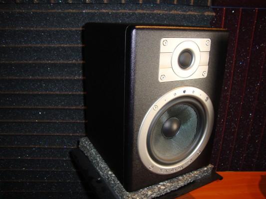 Monitores de estudio Esi Near 05 Experience