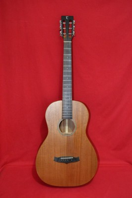 Parlor guitar Tanglewood TW133 Premier