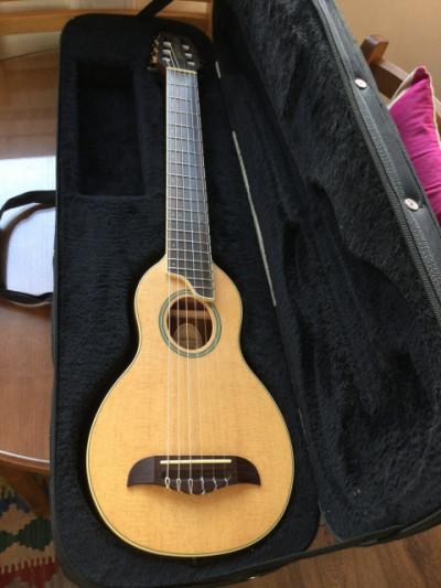 Guitarra Clásica de Viaje WASHBURN ROVER RO20