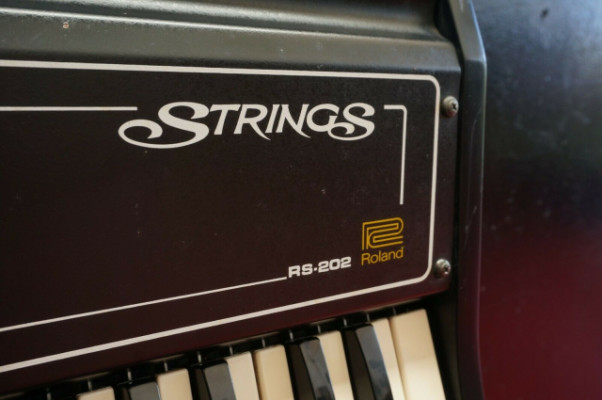 ROLAND 1976 Analog Synth (Genesis Cure Camel) String Machine