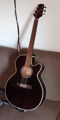 Guitarra electroacústica Takamine EG541SSC