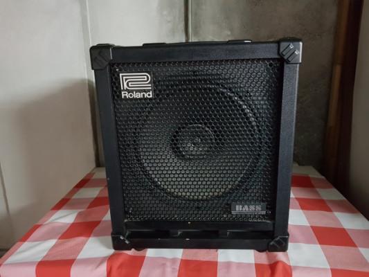 Roland Cube 100 Bass
