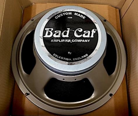 Bad cat vintage 30 8ohms