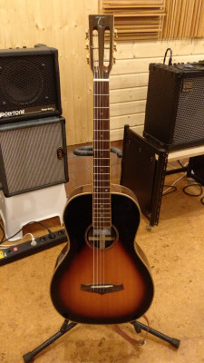 Guitarra parlor Tanglewood y más...