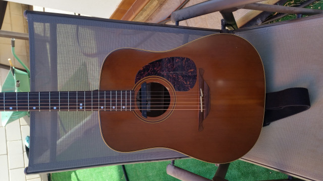 Guitarra Acústica Alhambra NW-1 (Fishman Rare Earth) vendo/cambio