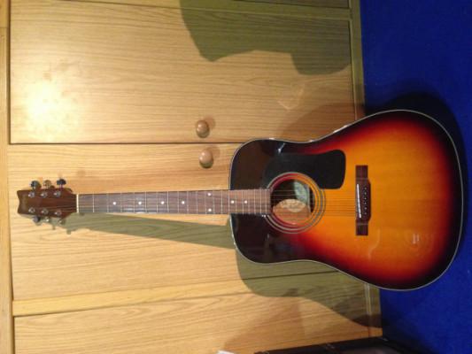Guitarra acústica washburn D10SB