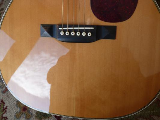 Tokai Cats Eye´s CE70T - rara 00028 guitarra
