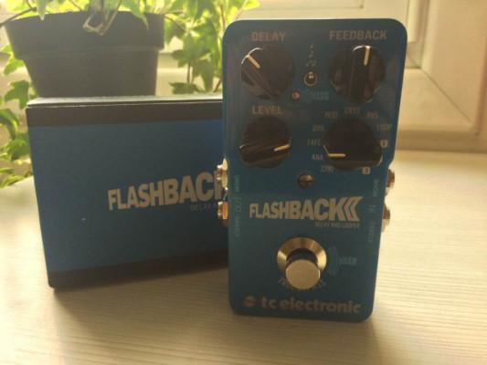 Flashback 2 Delay + Ernie Ball Tap Tempo