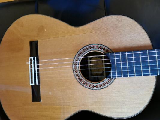 Guitarra LUTHIER -
