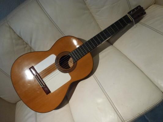 Vendo: Guitarra flamenca