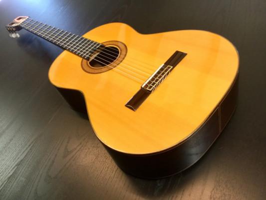 Guitarra clásica Pedro de Miguel
