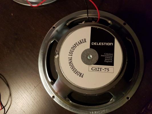 X2 Conos Celestion G12T-75