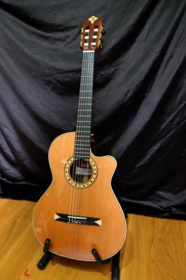 Vendo guitarra española ALHAMBRA CROSSOVER CS-3