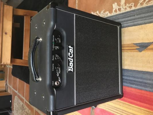 Amplificador badcat mini 2