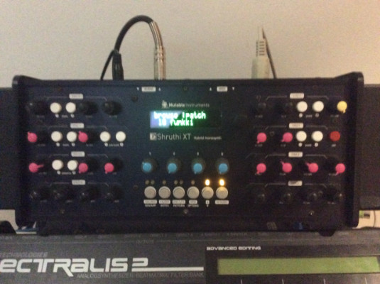 MUTABLE INSTRUMENTS SHRUTHI XT (env incl)