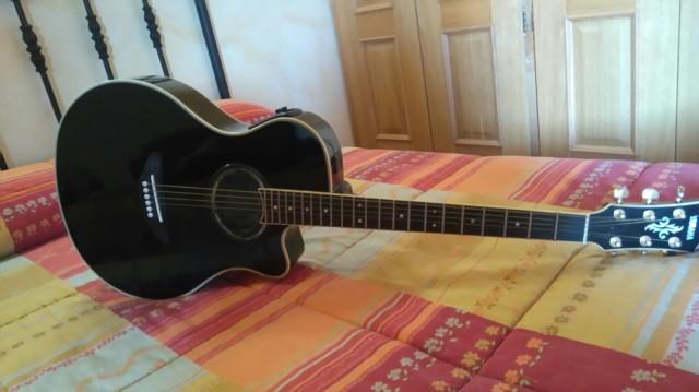 Electro Acústica Yamaha APX 700
