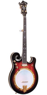 Compro banjo gold tone ebm5