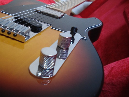 Fender Telecaster modificada