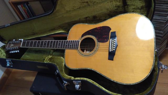 Guitarra Acustica Ibanez 12 cuerdas, mod V312