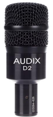 Micro Audix D2