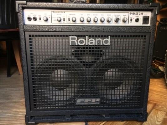 Amplificador de bajo Roland D-Bass 210