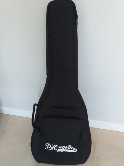 funda guitarra D'angelico