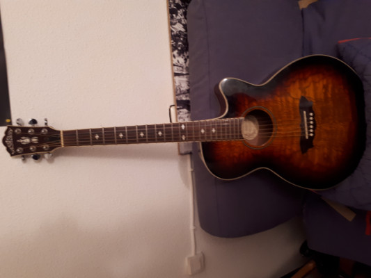 guitarra washburn ea18ts