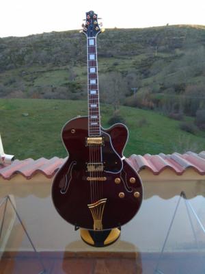 Guitarra Jazz Eléctrica SAMICK JZ-2 Tamaño L5 con estuche