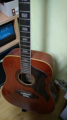 guitarra eko 12 cuerdas