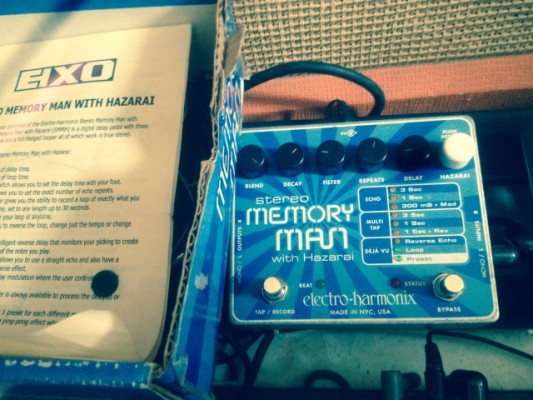 EHX Memory Man with Hazarai