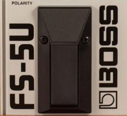 Pedal sustain - Boss FS-5U.