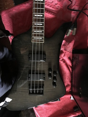 Bajo Jackson Kelly Bird js3