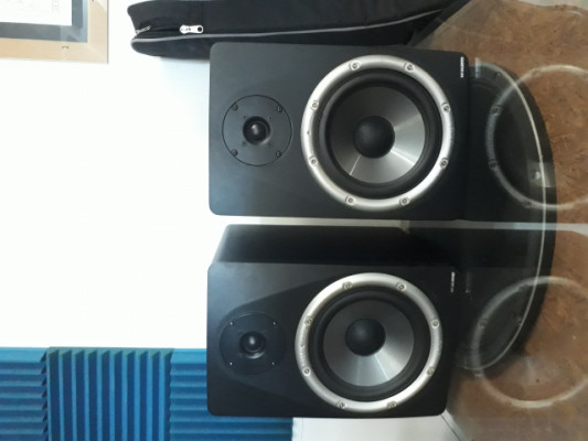 Monitores M Audio BX8