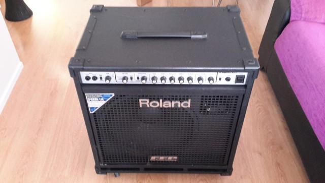 Combo Roland D-Bass 115 330w