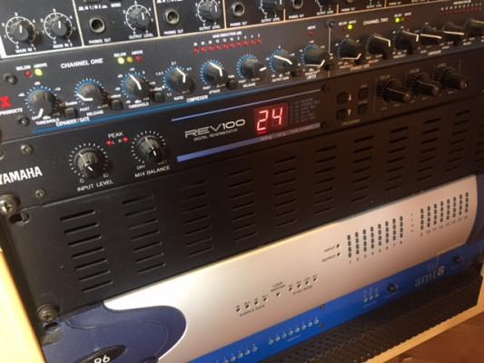 Yamaha REV100