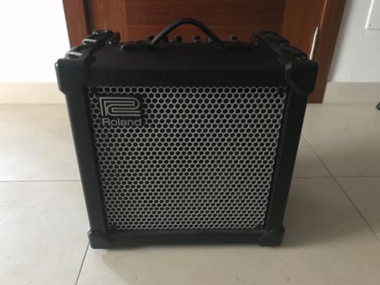 Roland Cube 40 XL
