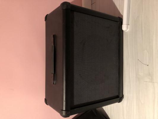 Pantalla 112 con beyma 12 ga 50 (CAMBIO)